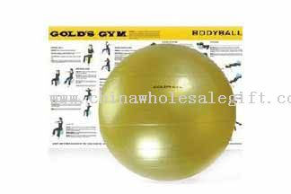 Golds Gym Body Ball