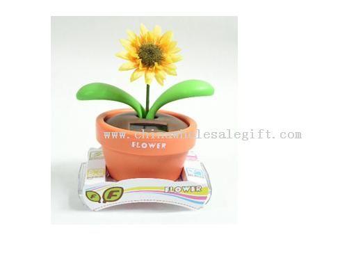 solar sway flower