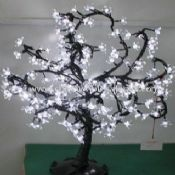 LED Trees Light images