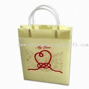 PP/PVC Promotional Shopping Bag images