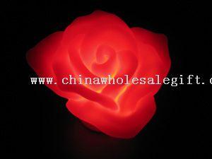 Flashing Rose