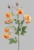 Rose Planter images