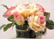 Français Rose arrangement images