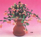 Mini Fuchsia Bush images