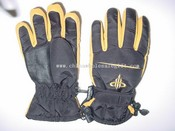 Ski gloves images