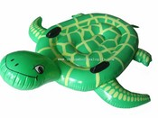 turtle float images