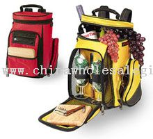 Golf Caddy Cooler and Backpack