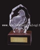 Crystal Eagle on Wooden Base images