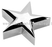 Silver Star Award Paperweight images