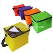 PP Non-Woven Cooler Bags images