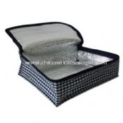 PP Non-woven Cooling Bag images