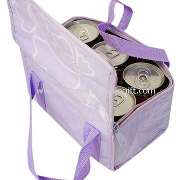 300D polyester 6 Can Cooler Bags
