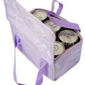 300D polyester 6 Can Cooler Bags images