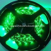 LED Strip Lights Green Color with Non-waterproof 0.2mm Thickness images