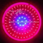 150W Red/Blue LED Grow Light, Used for Plant Growing images