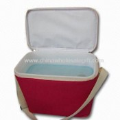 Hard Cooler Bag with Plastic Ice Box Inside, Made of 600D Polyester Material images