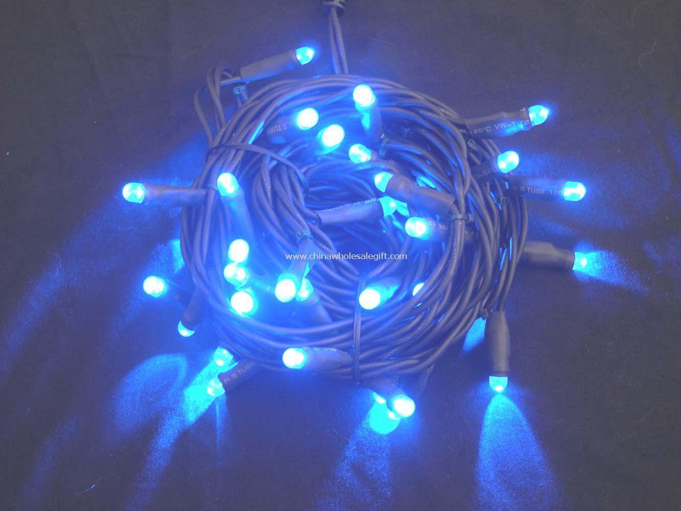 Ericson Led String Lights : 220v LED String Light - 220v led string light