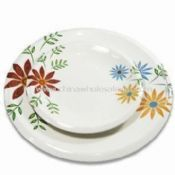 Melamine Plates with Non-toxic images