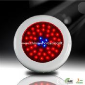 40 Red 5 Blue 90w LED Grow Lights images