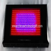 600w led growing lamps images