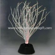FIBER TREE images
