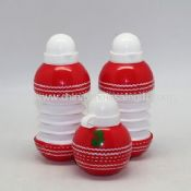 Foldable Cricket Water Bottle images