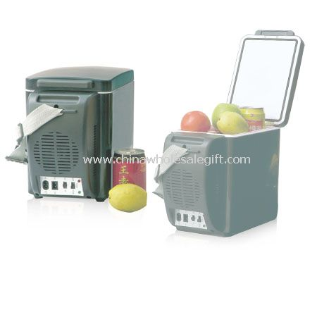 Car Refrigerator Cooler and Warmer