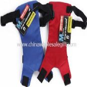 Car Seat Safety Seatbelt Pet Harness images