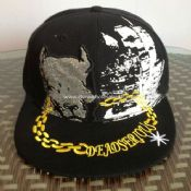 Acrylic Snapback Cap with Custom 3D Embroidery images