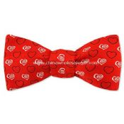 Polyester Woven Bowtie images