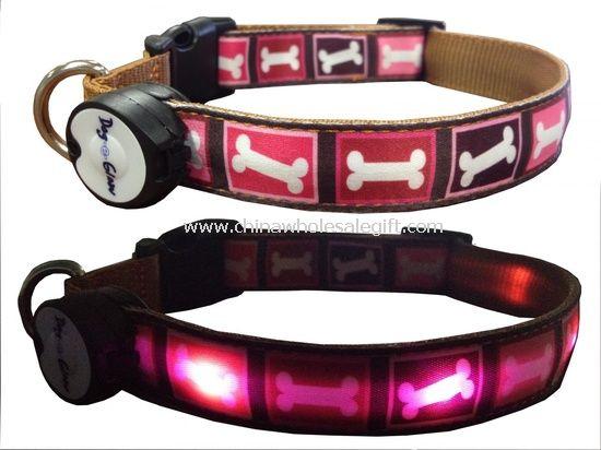 dog flashing collar