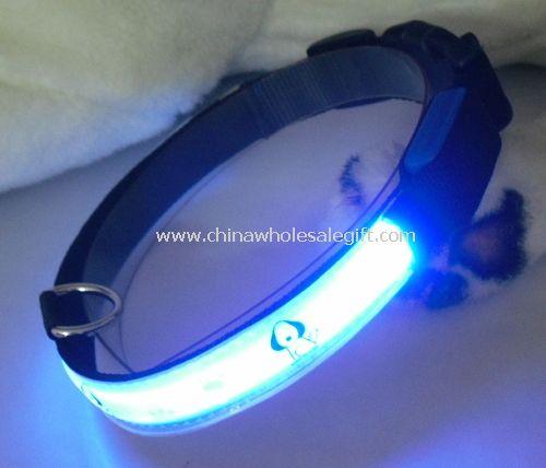 led glowing dog collar