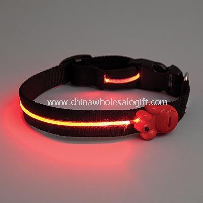 lighted pet collar