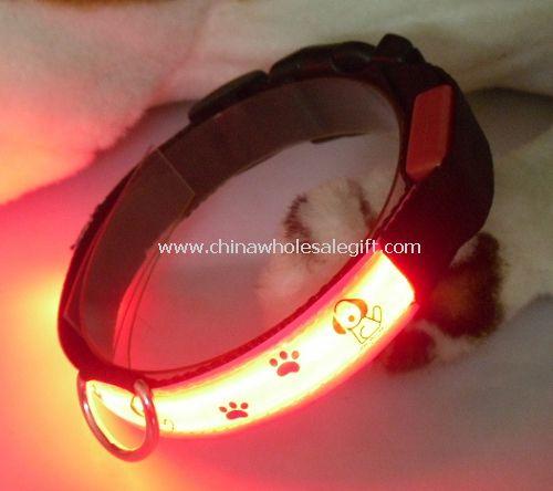 lighting up dog collar