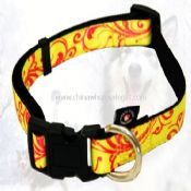 Pet collar images