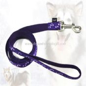 Pet leash images