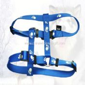 Pet Triangle harness images