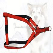 Triangle harness images