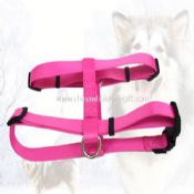 Pet harness images