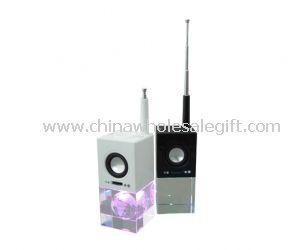 Crystal FM radio speaker
