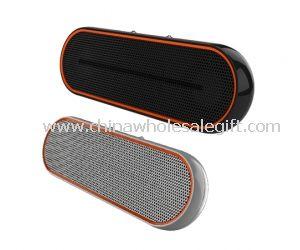 Mini Speaker With FM radio and USB/SD card slot