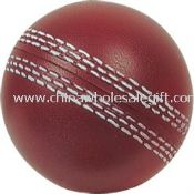 Cricket stress ball images