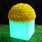 LED flower pot images