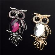 owl brooch for decoration images